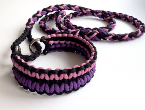 The Best Paracord Dog Collars (and Leashes)
