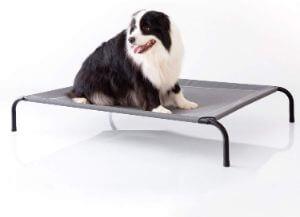 Petsure Elevated Dog
