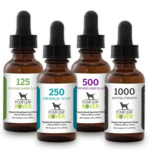 dogs naturally Four Leaf Rover CBD Oil