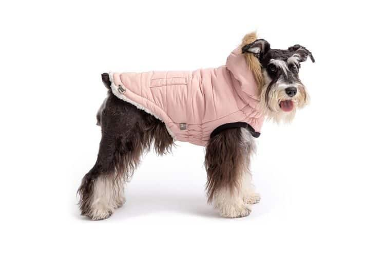 Dog wearing a pink Muttropolis City Parka Dog Jacket