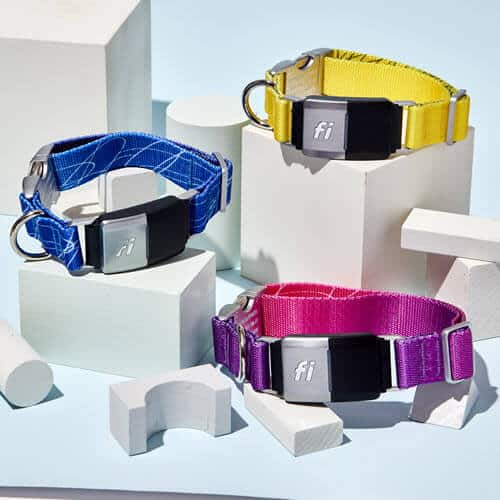 About the Fi Smart Dog Collar