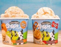 Ben & Jerry's Doggie Ice Cream