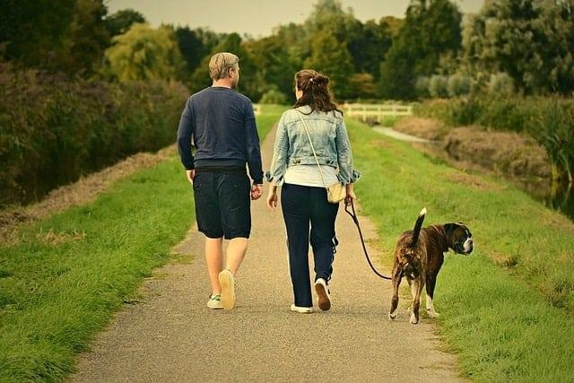 Couple walking their dog
