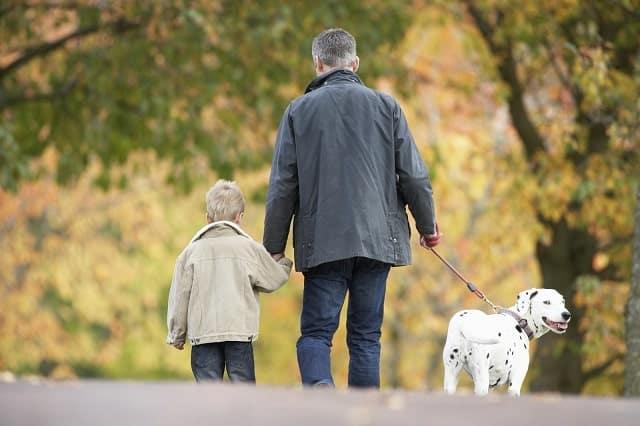 Man and young son walking a Dalmatian